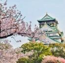 Vivre, étudier et travailler au Japon